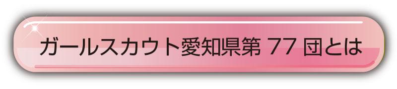 ガールスカウト愛知県第77団とは